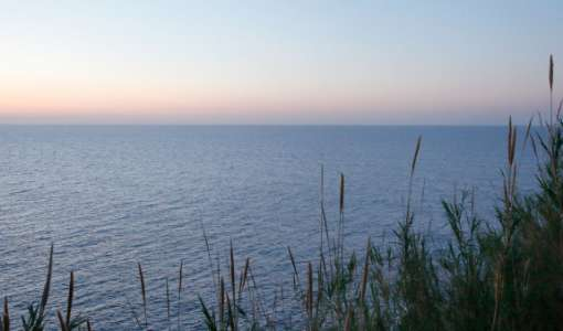 Dünen, Strand und Meer: Eine Landschaft zum Verlieben.
